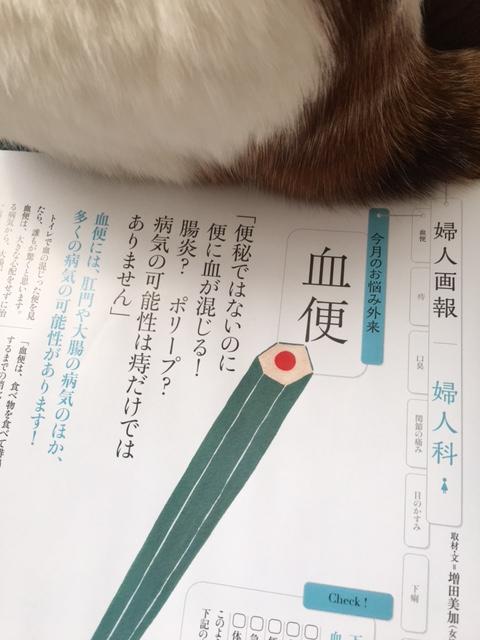 12月28日発売『婦人画報2月号』血便